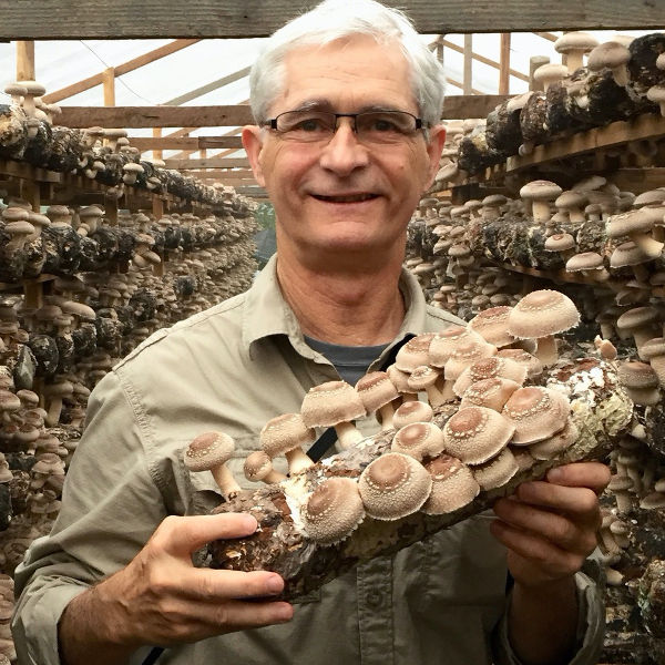 Healing and Immune Benefits of Mushrooms with Jeff Chilton